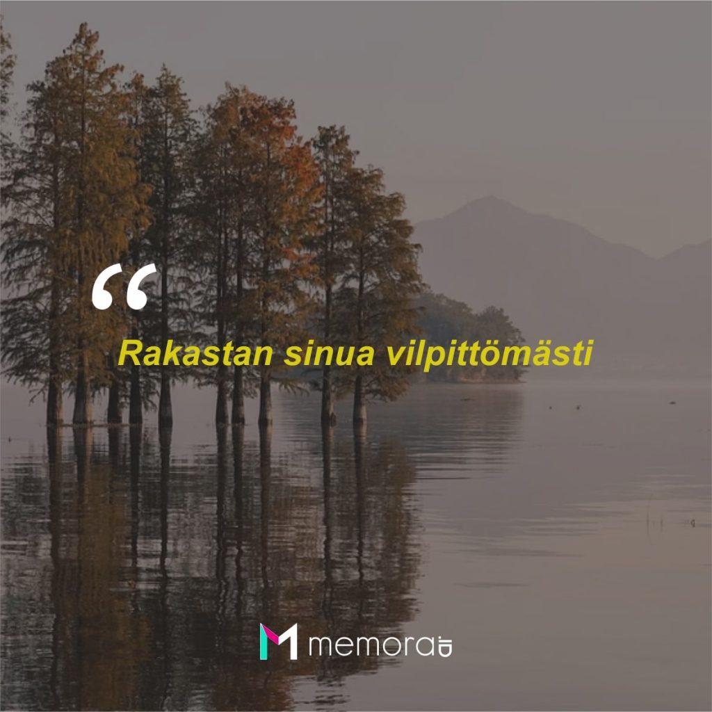 Kata-kata Cinta Romantis Bahasa Finlandia