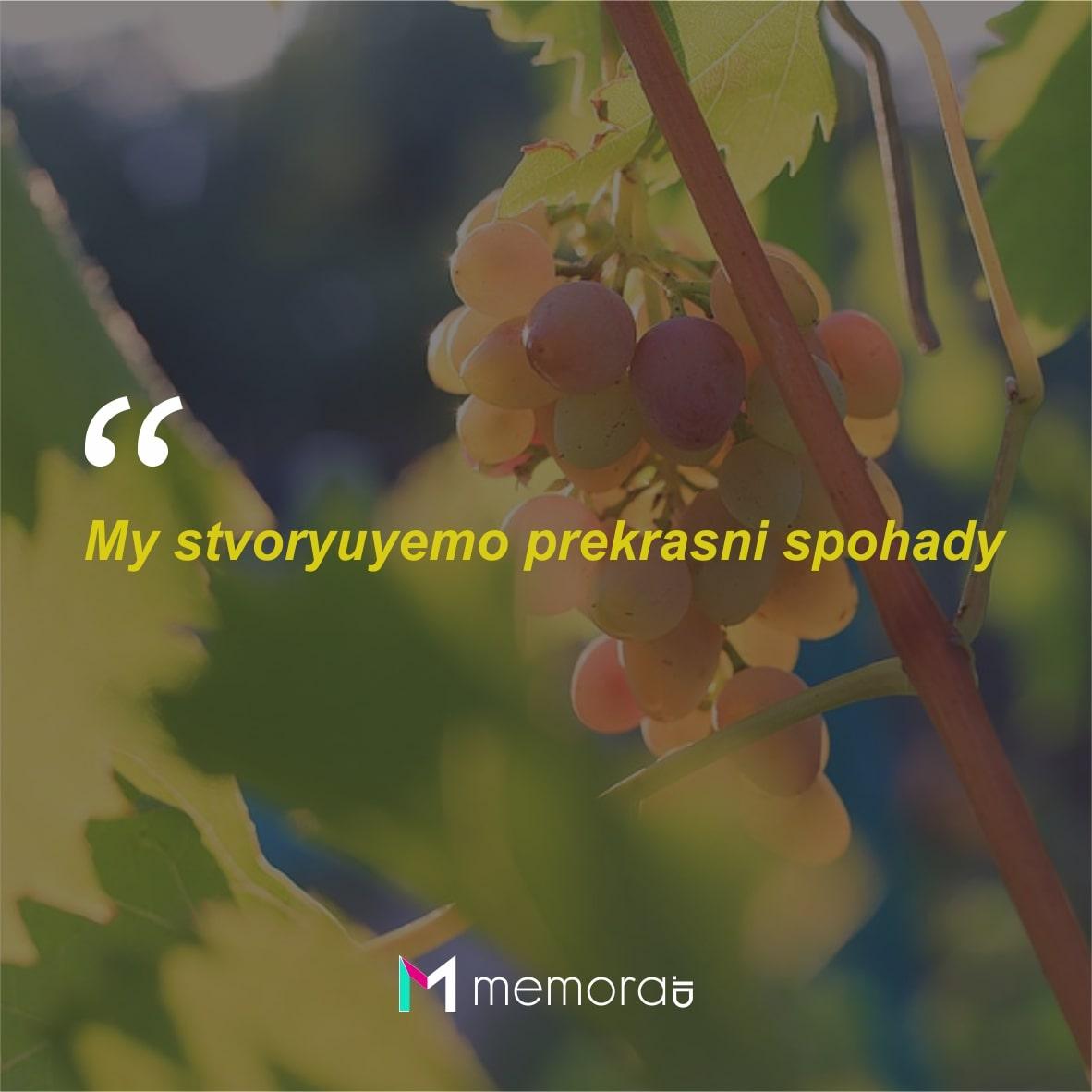 Kata-kata Cinta Romantis Bahasa Ukraina